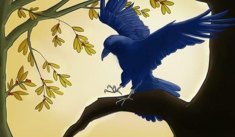 Saffron Thornhill Raven Portrait