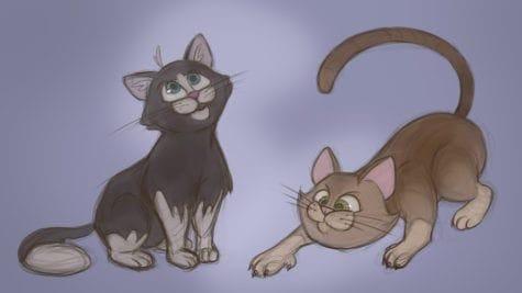 Saffron Thornhill cats