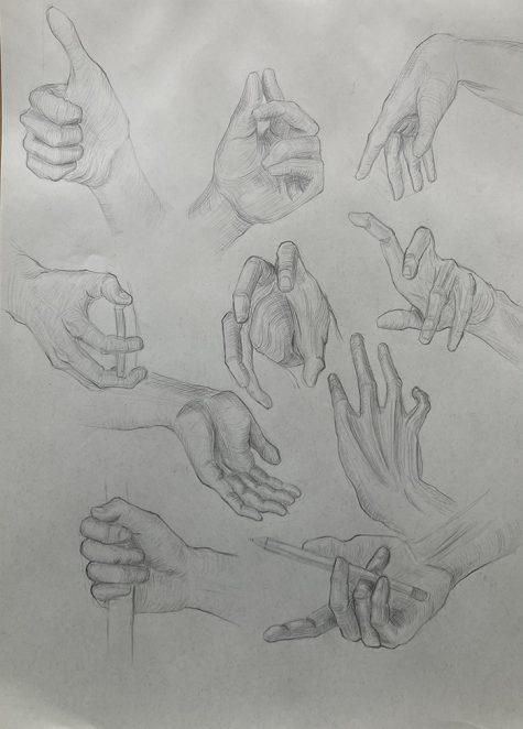 Andrea Milena Preciado Cardenas _hands